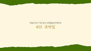 [한식창의센터] 제철인사 '호박잎'
