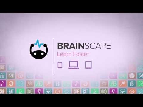 Brainscape Overview