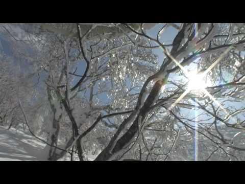 Mr.Begin's  niseko の北斜面に挑む!2009