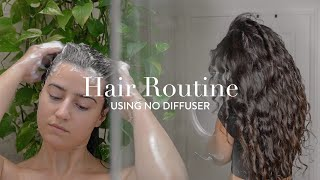 My Frizz-Free Natural Wavy/Curly Hair Routine: No Diffuser