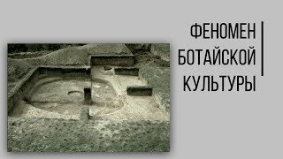 Феномен Ботайской культуры. Кто первым оседлал коня и придумал юрту?