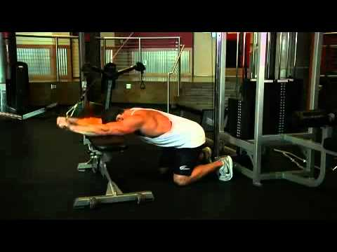 Triceps - Kneeling Cable Triceps Extension Exercise Guide