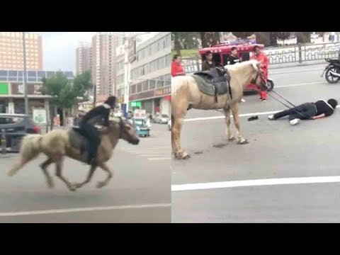 Man gallops down street on horseback after drink-driving fine