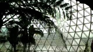 新潟県立植物園1