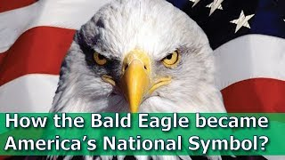 How the Bald Eagle became America's National Symbol?