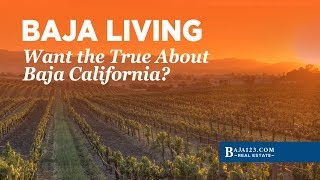 Want the  Truth About Baja California Mexico.  Can You Handle It!?