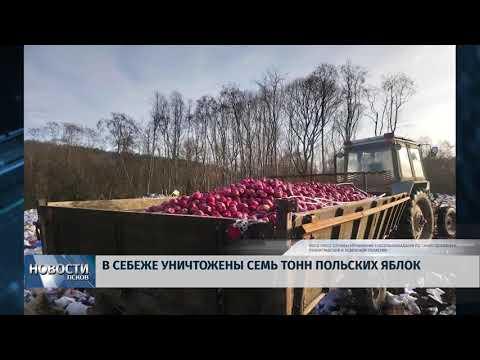 18.03.2019 / Семь тонн польских яблок уничножили в Себеже