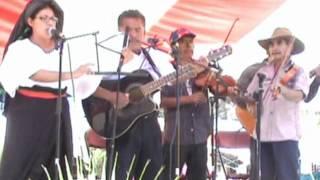 preview picture of video 'Grupo Musical de San Cristóbal Amatlán.flv'