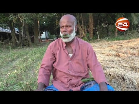 পাতার বাঁশিওয়ালা মকলেচুর রহমান