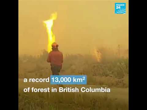 Canada: These firefighters are battling a 'fire tornado'