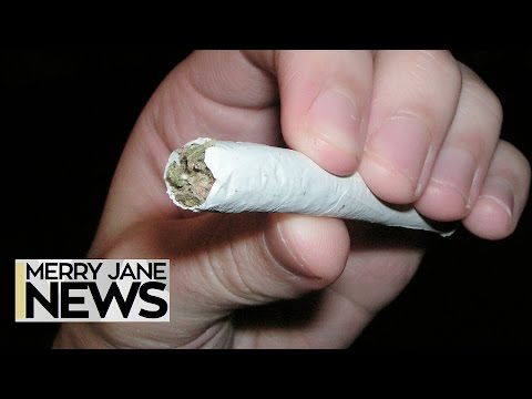 How to Plan the Ultimate Pot Vacation   MERRY JANE News