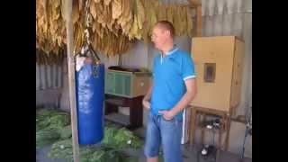 Ферментация табака 1 часть.( tobacco fermentation)