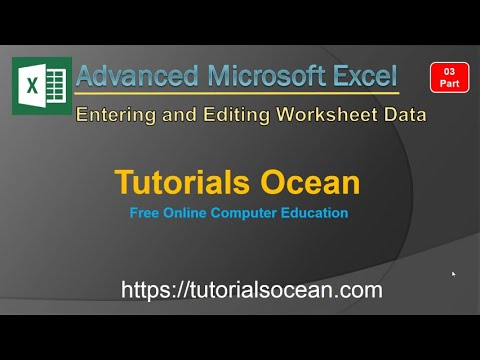 Part 03 Advanced Microsoft Excel Entering and Editing Worksheet Data in Urdu/Hindi