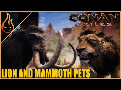 How To Get The Lion And Mammoth Pets Conan Exiles 2019