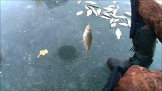 Зимняя рыбалка на весёловском водохранилище