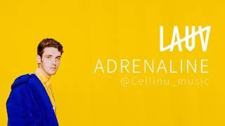 [가사해석/lyrics] Lauv - Adrenaline