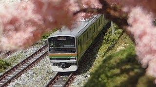 Nゲージ E231系+E233系 東海道線 併結運転 走行シーン集
