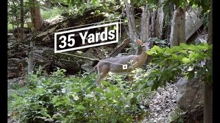 How to Judge Distance for Bowhunting and 3-D Archery