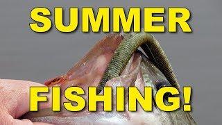 Summer Senko Fishing   Bass Fishing