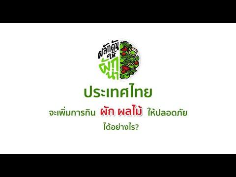 thaihealth ผลักดันให้ผักนำ : นโยบายจะต้องนำผักปลอดภัยให้คนกิน