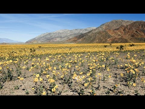 Parque Nacional Death Valley