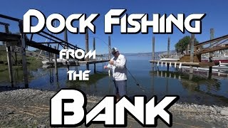 Bank Fishing: How to Catch Every Bass Under a Dock
