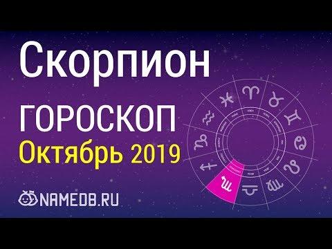 Знак Зодиака Скорпион - Гороскоп на Октябрь 2019