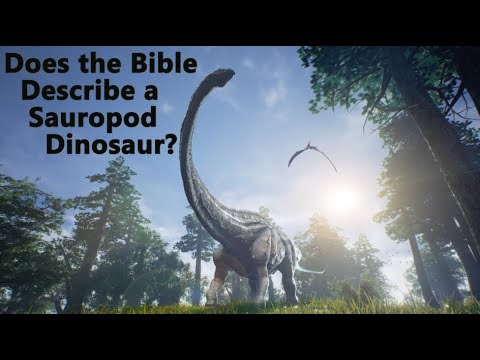 Does the Bible (Job 40) Describe a Sauropod Dinosaur (Behemoth)?