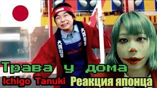 "Ichigo Tanuki reaction【Japanese】Трава у дома (""Земляне"" по-японски) Реакция японца"