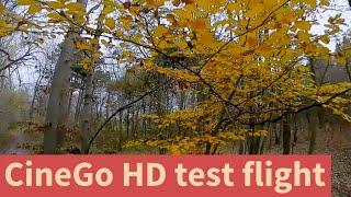 CineGo HD test flight | FPV DVR