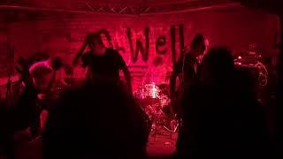 Video Galanti - s.r.o. Live OrWell