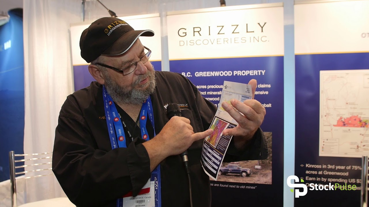 Grizzly Discoveries Catalyst Clip with President & CEO Brian Testo at the 2018 PDAC in Toronto