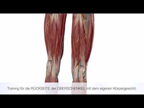 Neupositionierung des Kiefers Gelenkscheibe