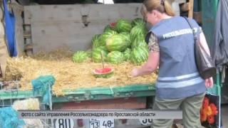 На оптовом складе в Ярославле обнаружили 20 тонн непроверенных арбузов