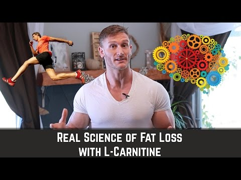 L-Carnitine | How to Mobilize Fat & Enhance Brain Health - Thomas DeLauer