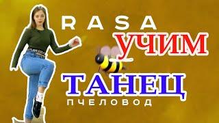 ПРОСТЫЕ ТАНЦЕВАЛЬНЫЕ ДВИЖЕНИЯ ДЛЯ НАЧИНАЮЩИХ - RASA - Пчеловод