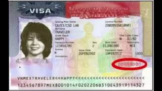 How to find your nonimmigrant visa number