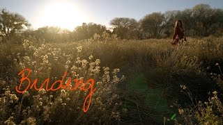 Wander List ~ Birding