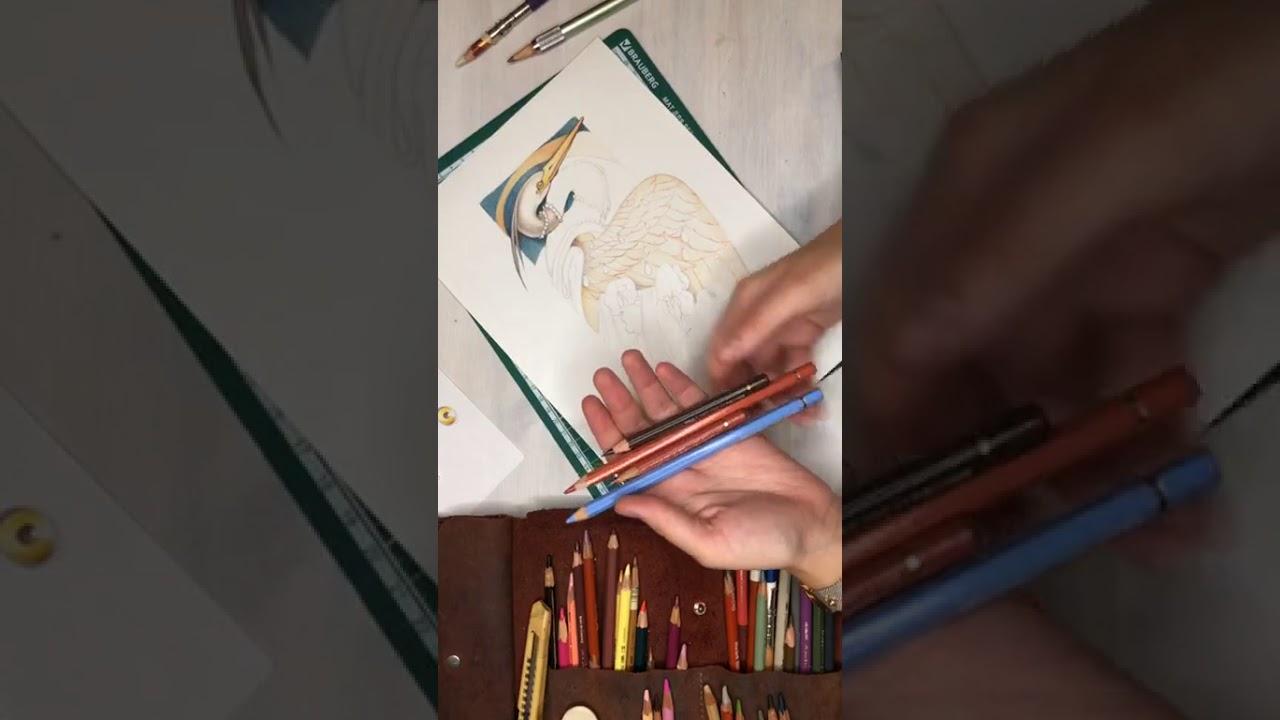 В рамках прямого эфира сАнгелиноймы нарисуем стилизованную птицу в стиле модерн. ⠀ ⠀ - Используемцветные карандаширазных марок⠀ - Поговорим о техниках работы с цветными карандашами.⠀ - Обсудим, как можно стилизовать птицу или животное, «одеть» и п…