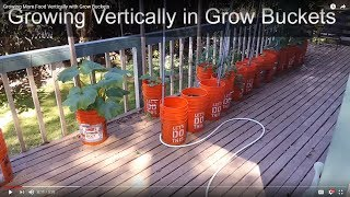 Growing More Food Vertically with Grow Buckets