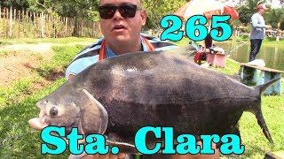 Programa Fishingtur na Tv 265 - Pesqueiro Santa Clara