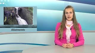 Szentendre Ma / TV Szentendre / 2020.10.16.