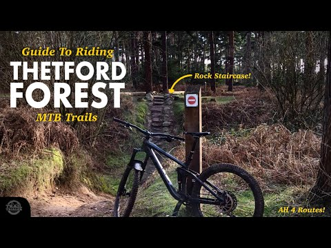 A Guide To Riding Thetford Forest MTB Trails