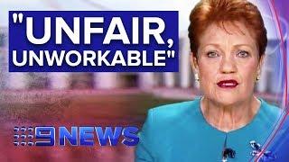 Senator Pauline Hanson slams Australia's Family Law system