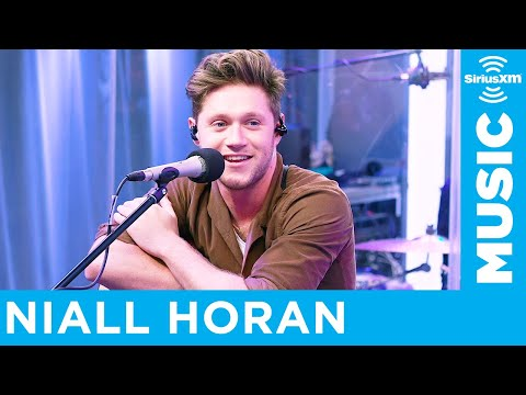 Niall Horan Wrote 'Nice to Meet Ya' in One Day
