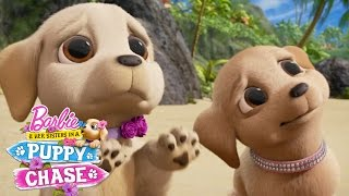 Cute Puppy Eyes | Barbie & Her Sisters in a Puppy Chase | @Barbie