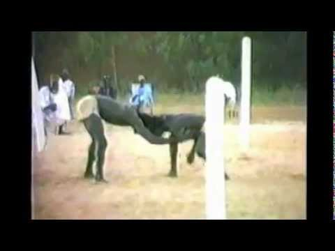 Lutte traditionnelle africaine - African traditional wrestling