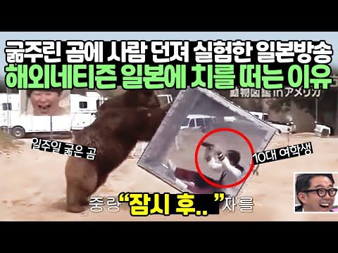 굶주린 곰에게 사람을 장난감으로 준 일본방송 해외네티즌 일본에 치를 떠는 이유
