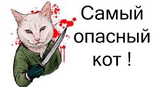 Самый опасный кот ! ( Furry fighter )