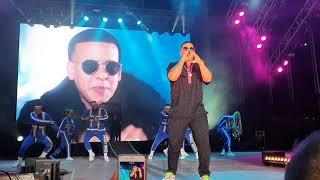 Daddy Yankee con calma en vivo